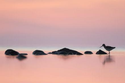 Gryningsljus till nattljus – Niclas Ahlberg i Nacka konsthall